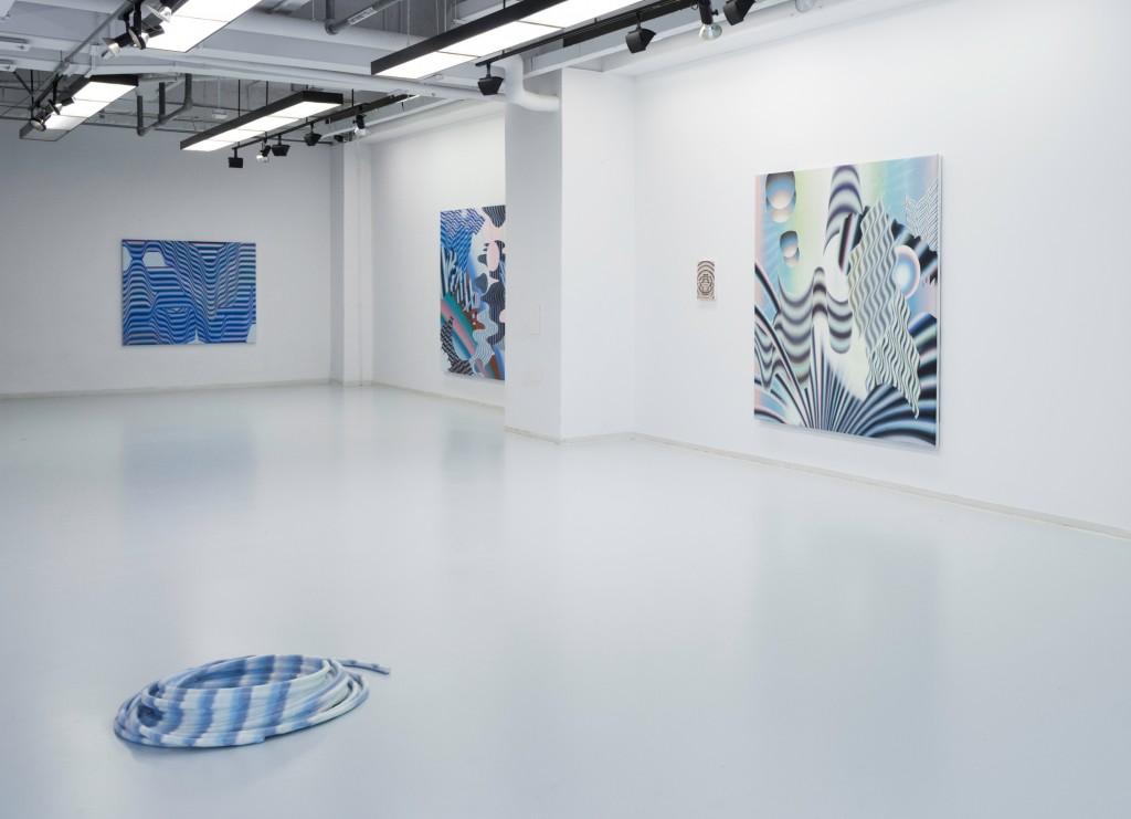 Vue d'installation, Novembre 2016, MFA gallery, Concordia